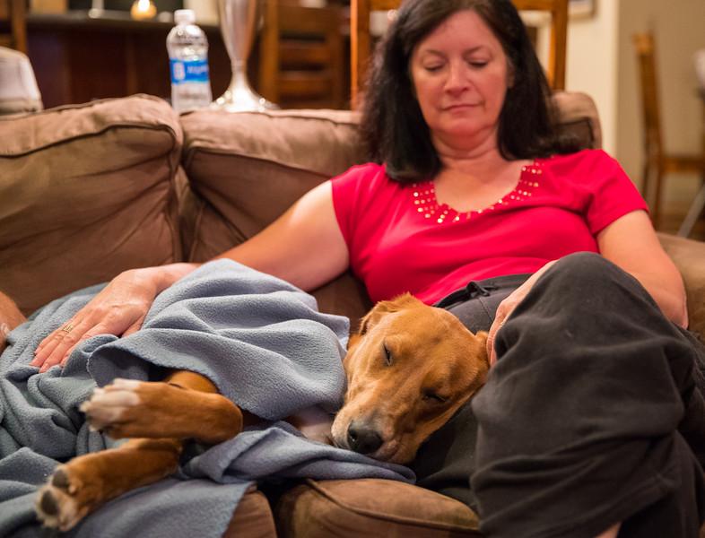 Ziggy Asleep on Mom.jpg