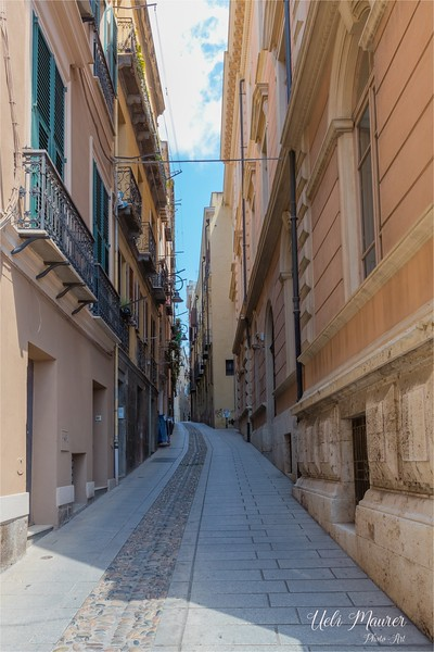 Sardinien 2016-05-18 -0U5A0648.jpg