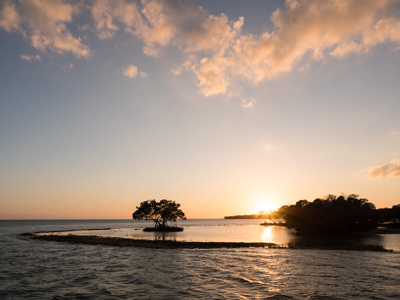Everglades-147.jpg