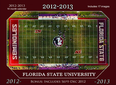 Florida State Single Image