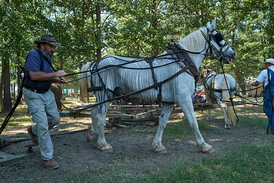 Old Fashioned Farmers Day - Silk Hope 2020