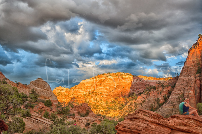 Canyon Overlook Trail, Zion Park.jpg