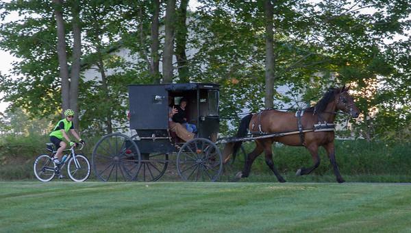 Amishland 2017