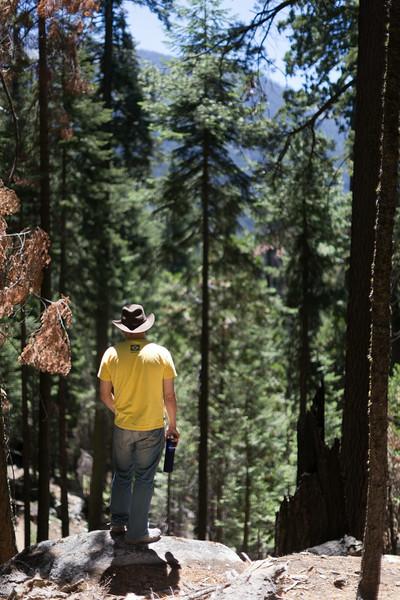 Sequoia_0183.jpg