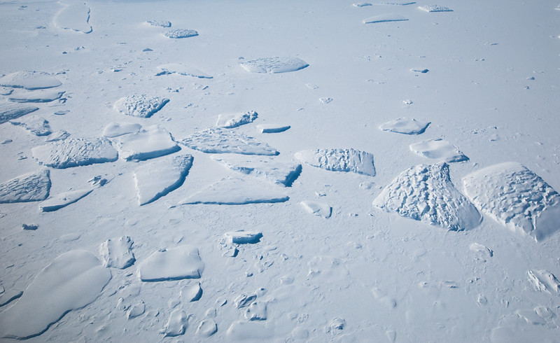 Icebergs in sea ice