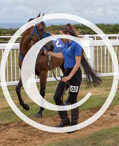 Race 2 - The Ravenscroft Handicap Sprint