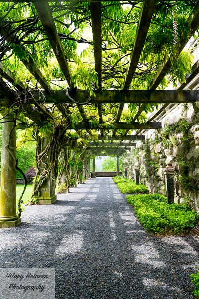 Biltmore Estate Gardens 2