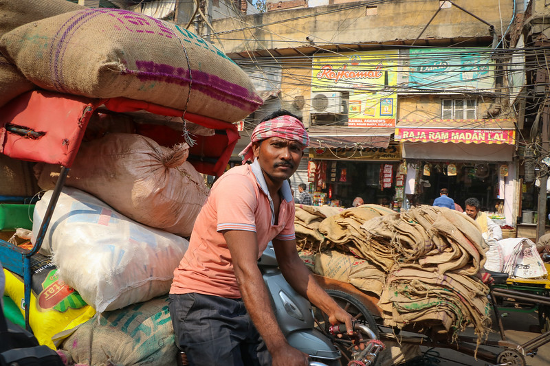 India-Delhi-2019-0687.jpg