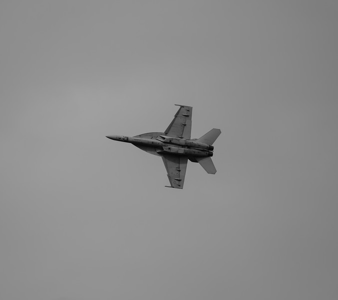 F18E-SuperHornet-020_BW