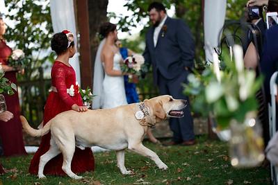 Holly & Chandlar Wedding Gallery 2