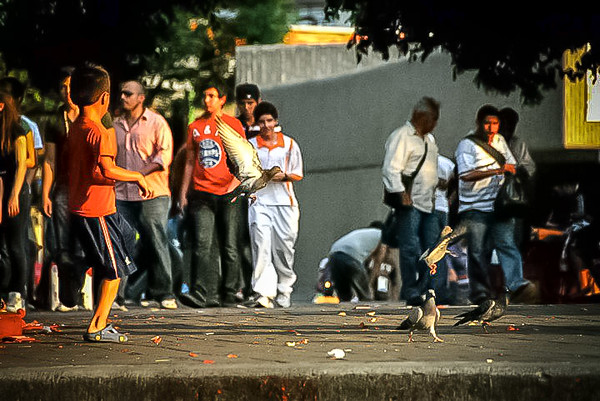 Guadalajara-2010_NickJamison_058.jpg