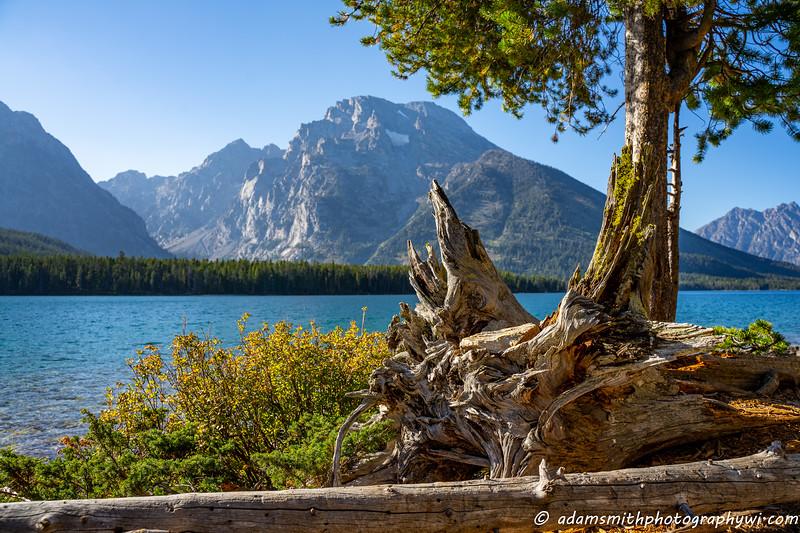Grand-Teton-National-Park-1-2.jpg