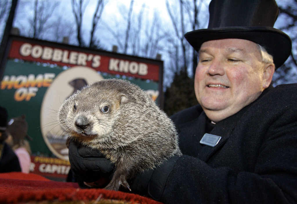 . Punxsutawney Phil, the weather predicting groundhog, is held by his handler Bill Deeley on his den after the prediction of six more weeks of winter in Punxsutawney, Pa. on Thursday, Feb. 2, 2006. (AP Photo/Keith Srakocic)