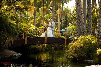 Danielle and Robert- Paradise Point Resort and Spa