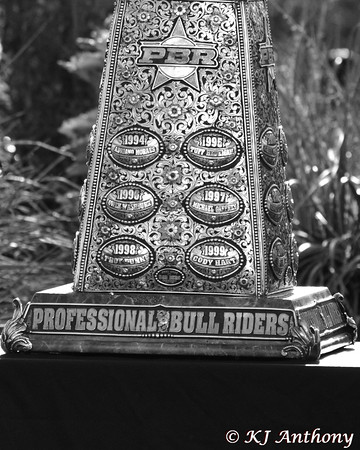 PBR 2014 World Finals More to Experience