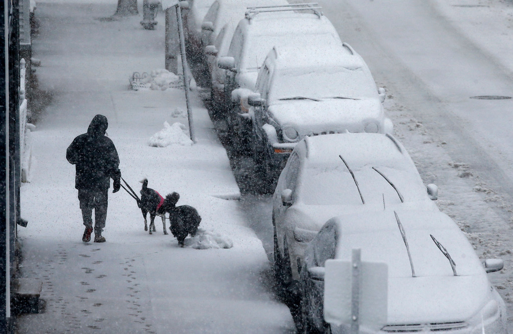 . A person walks dogs on Marginal Street in Boston, Tuesday, March 13, 2018. Boston finds itself in the bullseye of the third nor\'easter in two weeks. (AP Photo/Michael Dwyer)