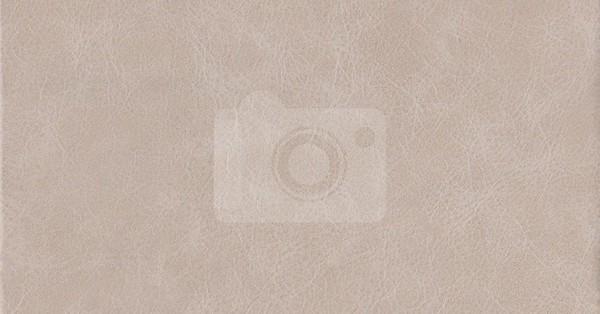 collin album