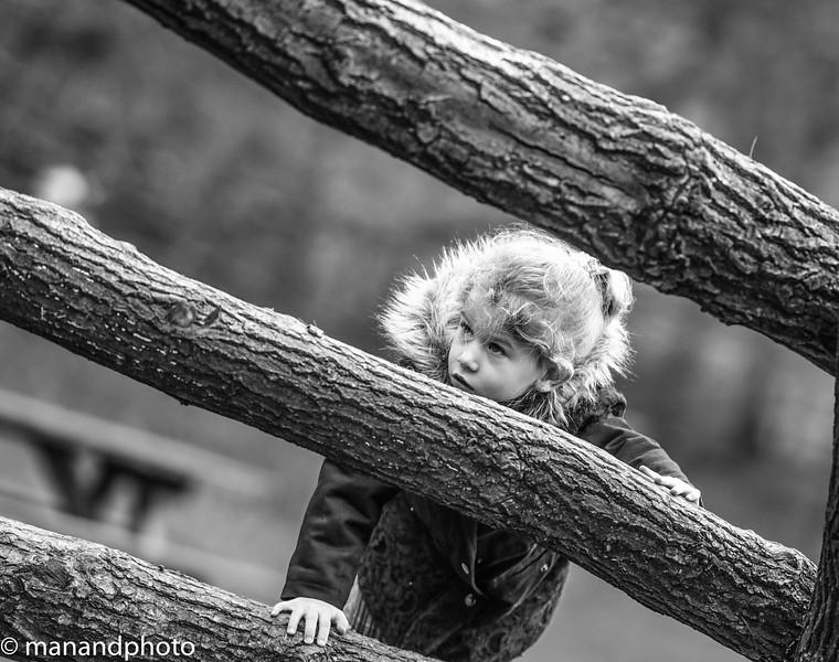 weald park dec 2015-17.jpg