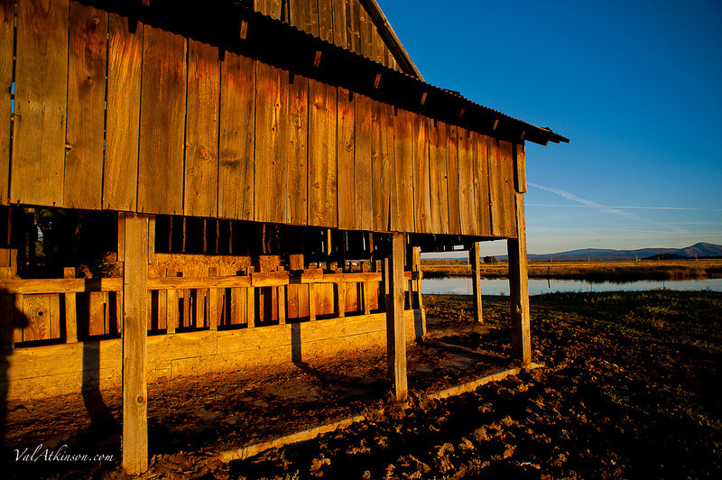 Barns #3-68.JPG