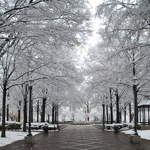 J.G. Photography Presents: A Birmingham Winter Wonderland