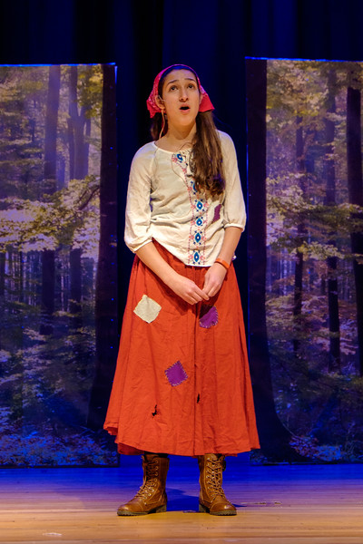 2015-11 Cinderella Rehearsal 0510.jpg