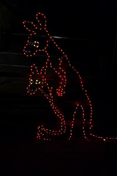 Zoo Lights 2010