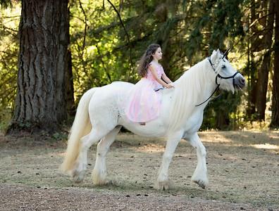 Kimberlee DeSantis unicorn