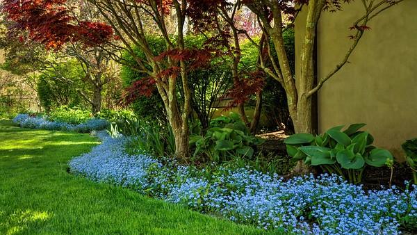 An Inspiring Garden, Season Five (16 Images)