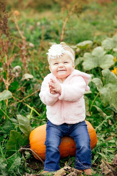 Pumpkin Mini 2013