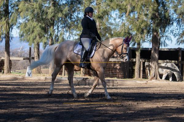 Rider 236