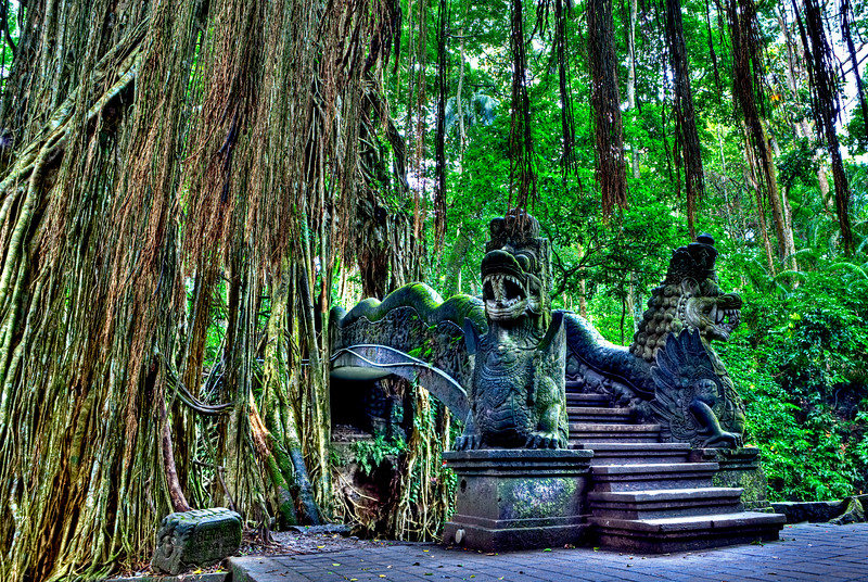 ubud monkey forest dragon bridger hdr.jpg