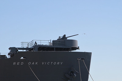 Laura's Adventures - Red Oak Victory ( and stuff )