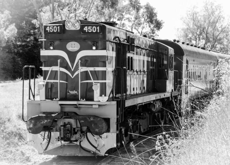 Train to Kandos_7477_2 3801 50th Birthday