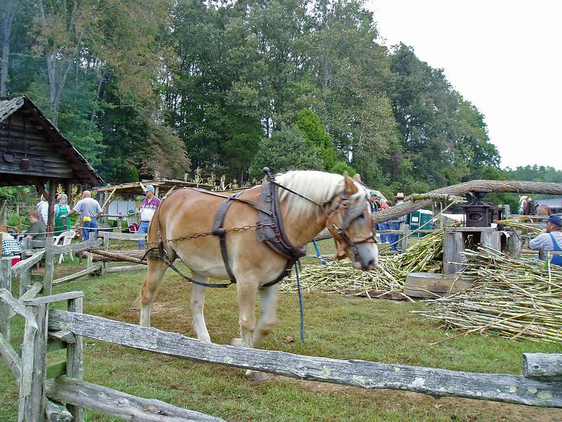 Horse Drawn Sorghum Mill