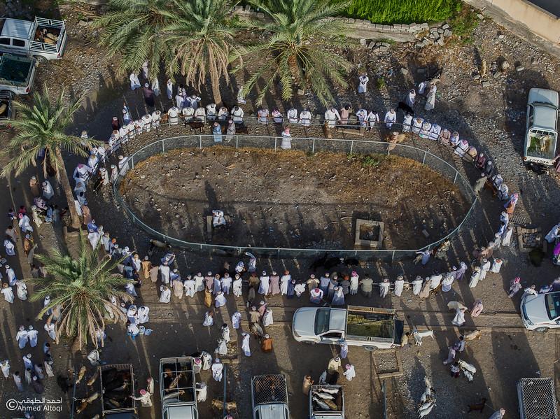DJI_0118- Alrustq-Habtah- Oman.jpg