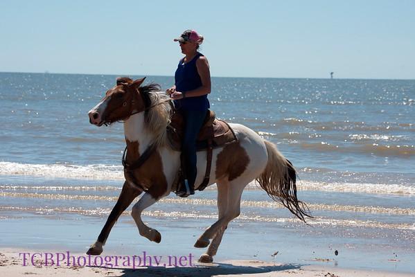 Surfside Horseback Ride