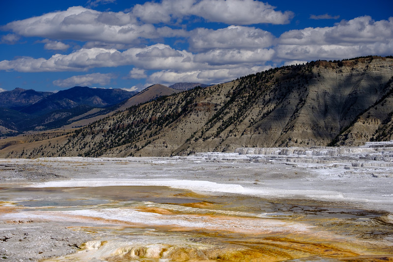 Mammoth-Hot-Springs-Yellowstone-Mroczek-2851.jpg