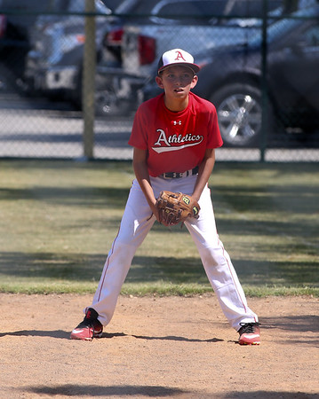Brady Baseball