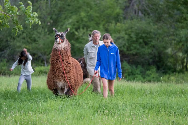 Jay Waltmunson Photography - Wallowa Llamas Reunion - 044.jpg