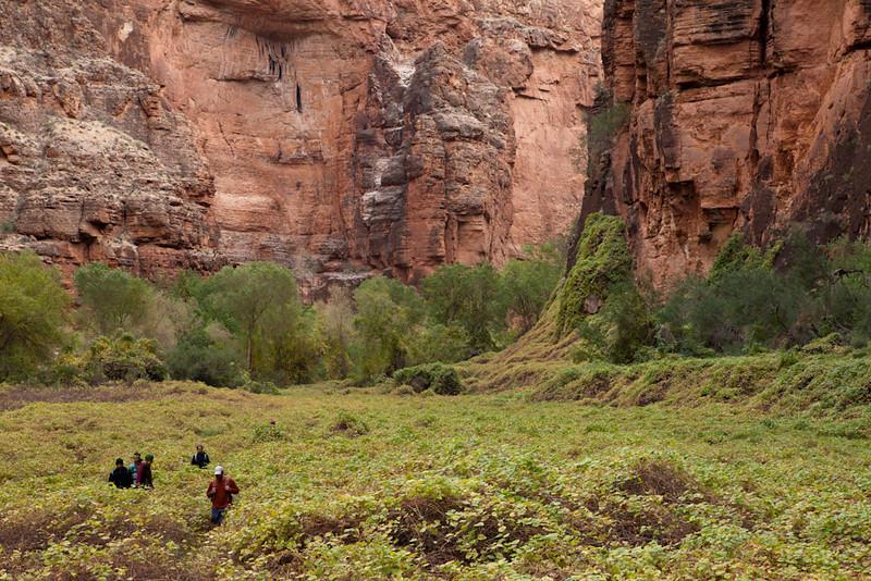 Grand Canyon October-0499.jpg