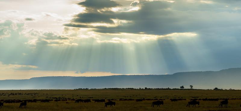 Kenya 2015-05866.jpg