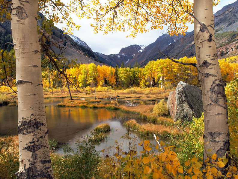 Lundy Lake Beaver Ponds. Fall Colors. Eastern Sierras.