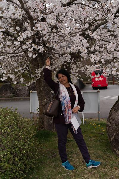 20190411-JapanTour--606.jpg