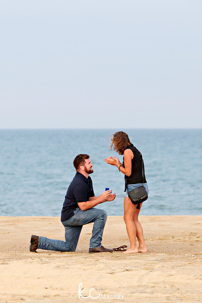 Proposal Gallery