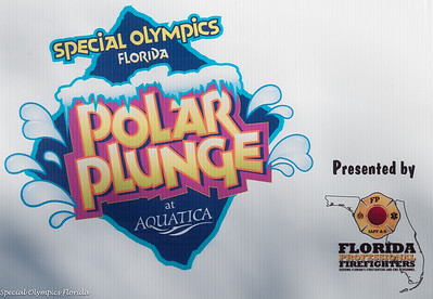 2013 Special Olympics Polar Plunge