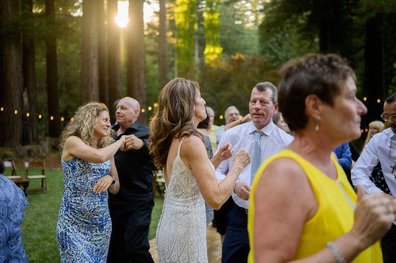 Z06_3206_Terri_and_Dave_The_Redwood_Barn_Scotts_Valley_Wedding_Photography.jpg
