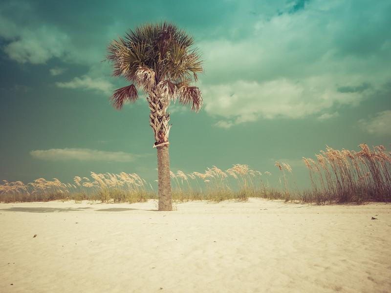 simple_beach.jpg