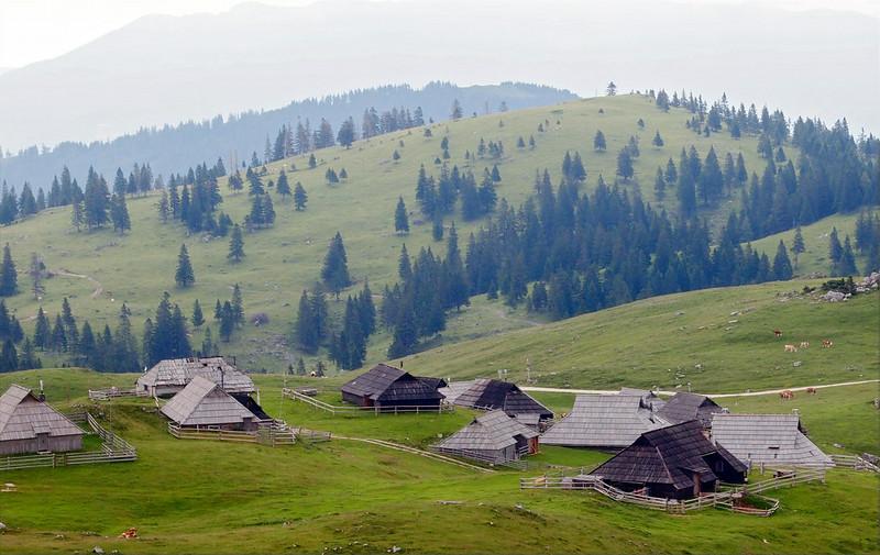 Velika Planina Kamnik 29-06-14 (60).jpg
