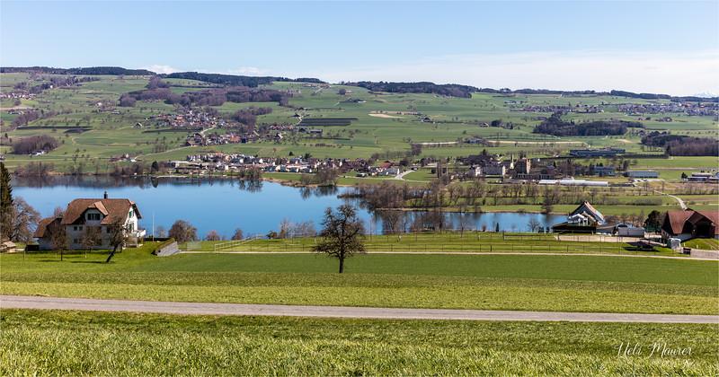 2018-04-04 Baldeggersee - 0U5A7456.jpg