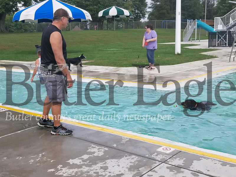 Tom Sellers of Center Township watches his Remi, a English chocolate labrador mix, paddle around the pool. Photo by Nathan Bottiger.